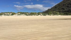 A wide, white sand beach on the island of Floreana in the Galapagos