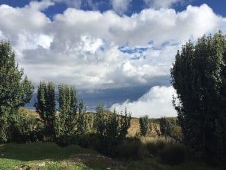 27.  Ecuador Adventures and Frogs – Quito, Part II